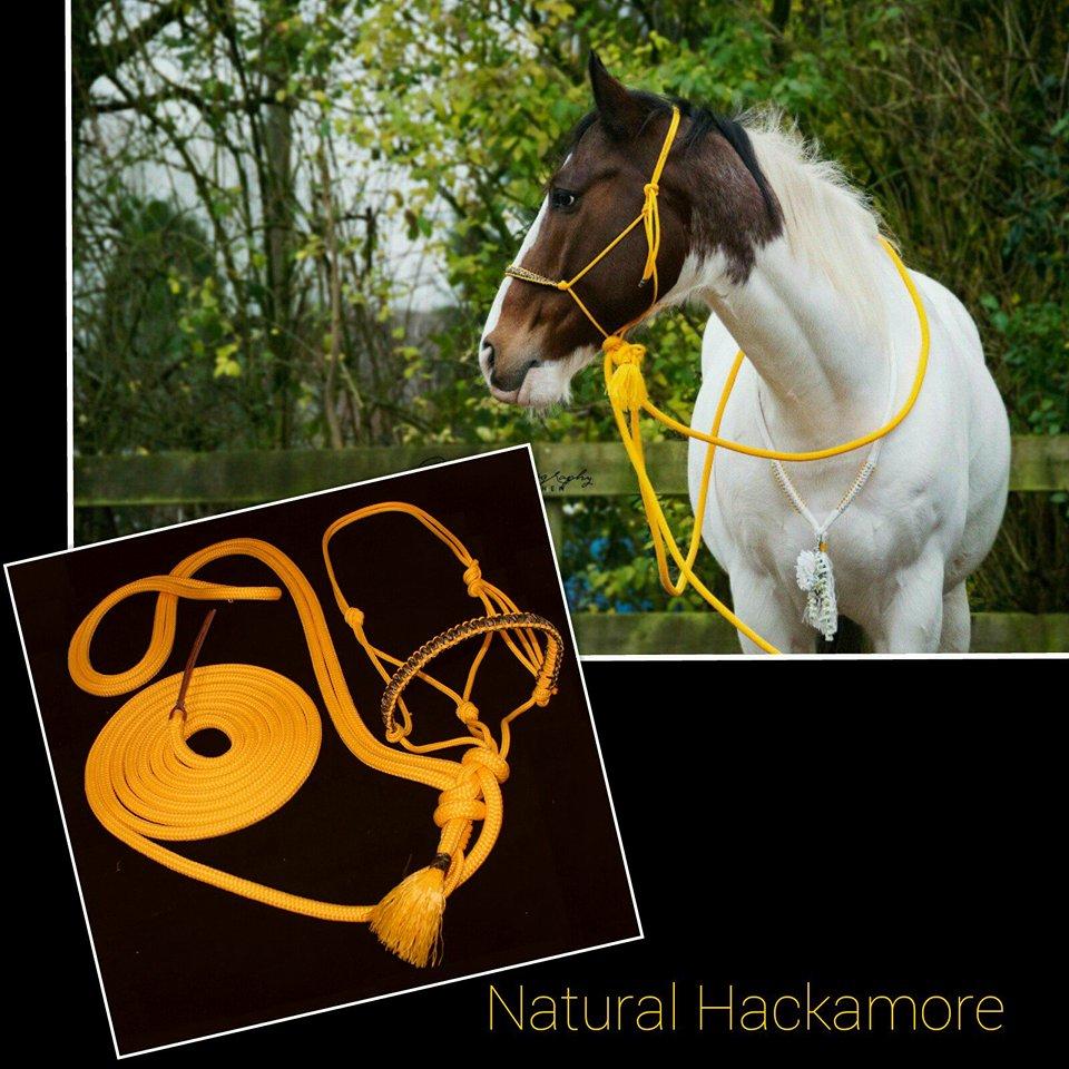 Natural hackamore