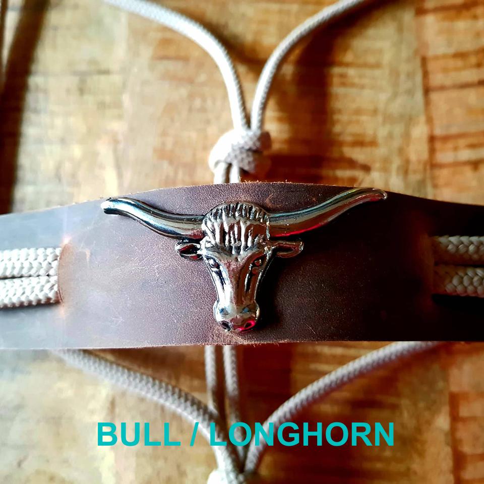 FSHA Bull?Longhorn